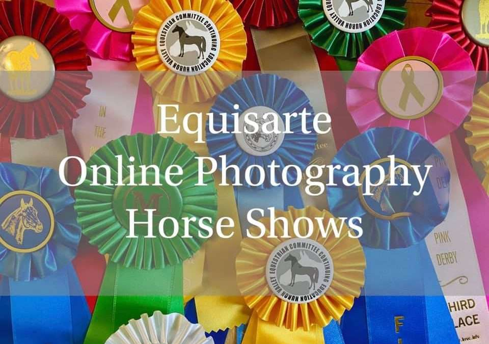 Equisarte Online Photography Horse Show
